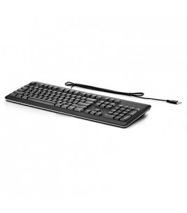 HP Wired USB Keyboard GR, Grey (QY776AA)