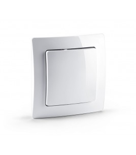 Devolo Home Control Wall Switch (9808)
