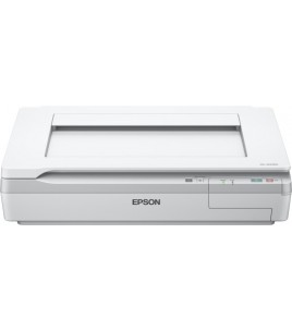 Epson Workforce DS-50000, A3 Scanner, USB 2.0 (B11B204131)